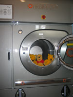 bears_in_washer.jpg